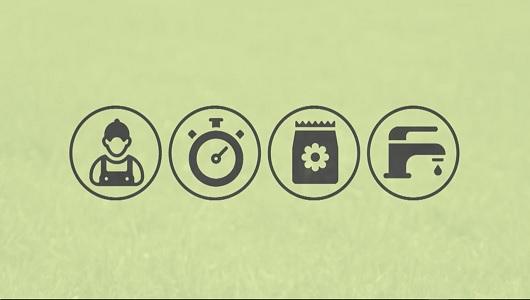 סרט תדמית - מיזם חדשני לצביעת דשא